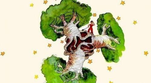 Drzewo baobabu w sercu – refleksje nad Małym Księciem