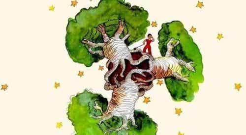 Drzewo baobabu w sercu - refleksje nad Małym Księciem