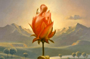 Człowiek i kwiat