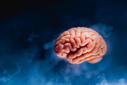 Mózgowe tsunami: co dzieje się w Twoim mózgu przed śmiercią