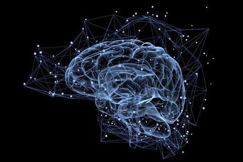 mózg na ciemnym tle