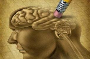 Krzywa zapominania - Ołówek wymazuje mózg