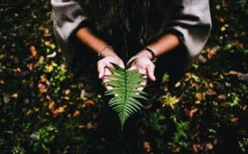 Sens w życiu: do jego znalezienia potrzebujesz spokoju i cierpliwości
