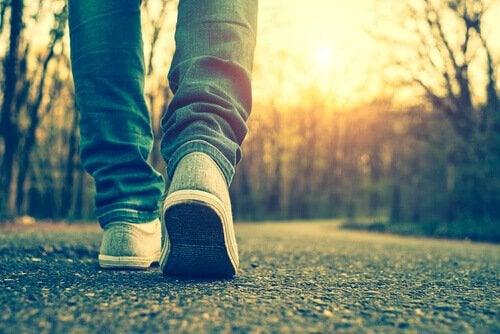 Spacer po parkowej ścieżce.