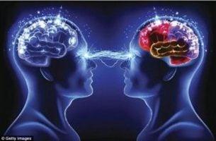 Mózgi połączone myślami - telepatia