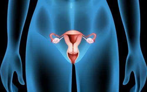 Torbiel na jajniku: objawy, przyczyny i leczenie