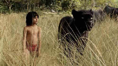 """""""Dzikie dzieci"""" i ich zachowanie w naszym społeczeństwie"""
