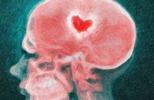 Czaszka - zerwanie z partnerem a Twój mózg