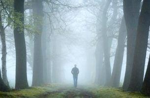 Człowiek w lesie.