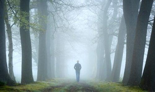 Test lasu i jego miejsce w psychoanalizie