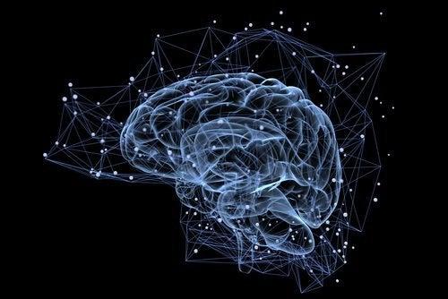 Mózg-animacja komputerowa