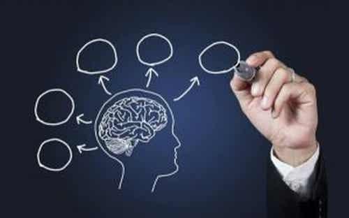 Psychologia i 10 powodów, dla których warto ją studiować