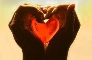 Serce w dłoniach - ufność
