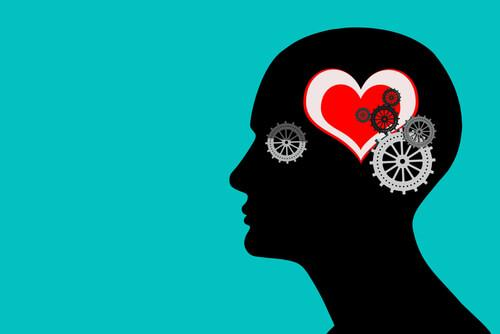 serce w mózgu