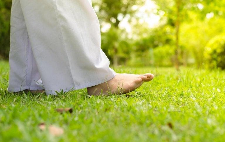 Chodzenie po trawie.