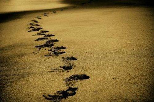 Ślady na piasku - wiemy kim jesteśmy
