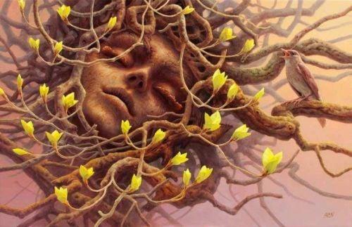 Zasoby poznawcze - twarze kobiety w drzewie