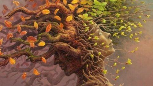 Zasoby poznawcze: decydujący krok w ewolucji mózgu