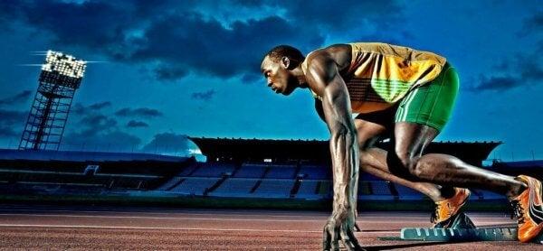 Biegacz - czynniki psychologiczne i wyniki sportowe