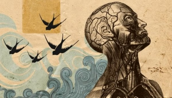 Człowiek i ptaki.