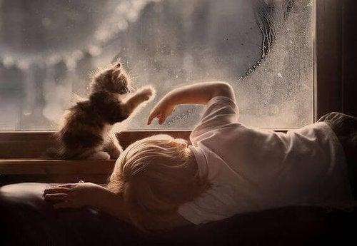 Dziecko bawi się z kotem ćwicząc umiejętności psychomotoryczne