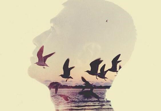 Mężczyzna i lecące ptaki.