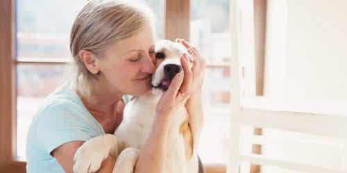 Terapia z udziałem zwierząt i korzyści z niej płynące