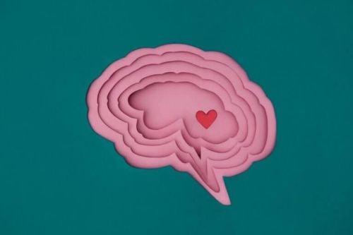 Małe serce wewnątrz mózgu