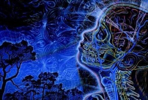 Mózg - osoba