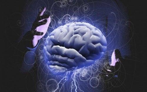 Mózg i dłonie dookoła niego