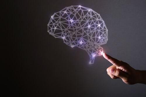 Mózg utworzony ze świateł, którego dotyka ludzka ręka.