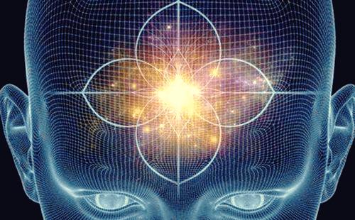 Przysadka mózgowa i szyszynka - funkcje i charakterystyka