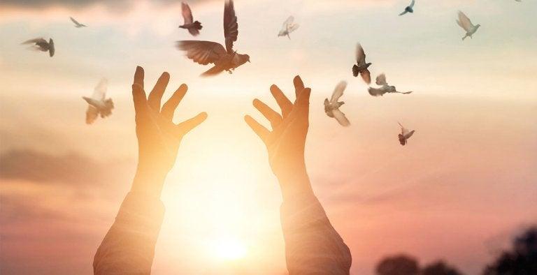 Ręce wypuszczające ptaki