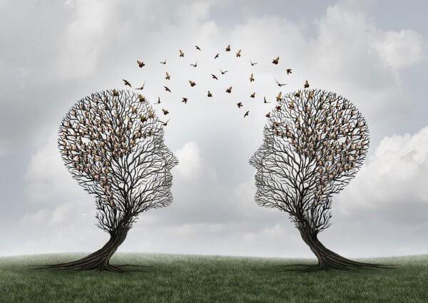 Dwa drzewa w kształcie ludzkiej głowy