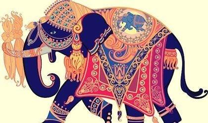 Słoń, który zgubił obrączkę - historia do przemyślenia
