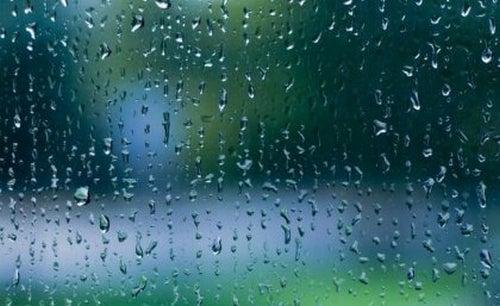 Odgłos deszczu – istna muzyka dla naszego mózgu
