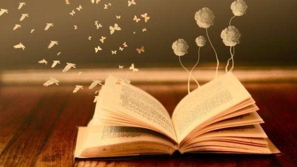 książki są lustrem