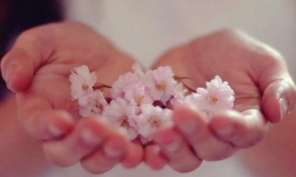 kwiaty w dłoniach