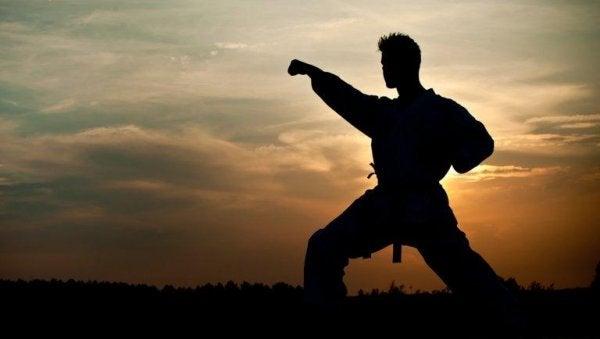 Mężczyzna ćwiczący sztuki walki.