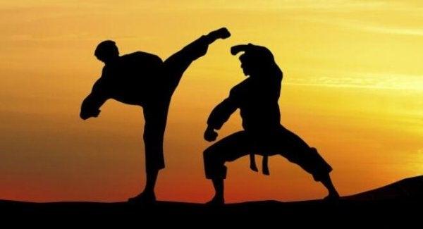 Sztuki walki.