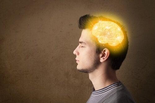 Mózg nastolatka