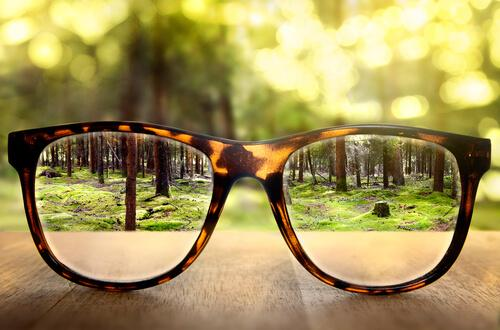 Okulary, przez które widać las.
