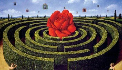 Róża w labiryncie