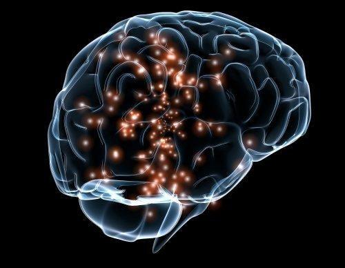 Aktywność neuronów