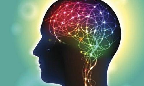 Anandamid: neuroprzekaźnik szczęścia