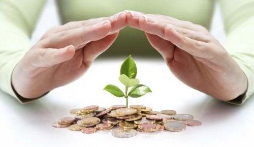 drzewo wyrastające z pieniędzy