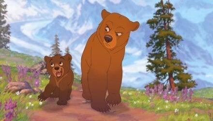 mój brat niedźwiedź kadr