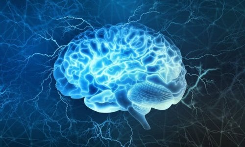 Kora przedczołowa: jedna z najciekawszych części mózgu