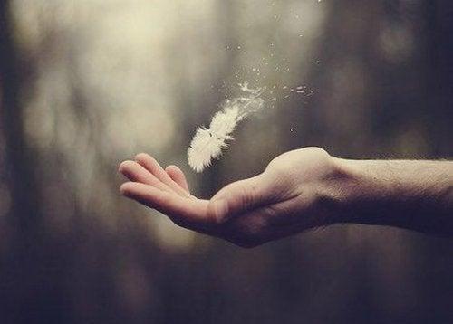 Dłoń łapiąca piórko
