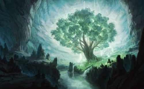 Drzewo życzeń - poznaj historię Osho